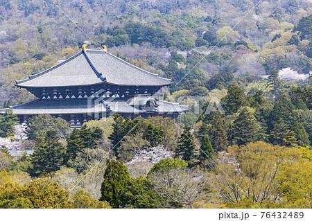 奈良公園 県庁屋上からの風景 76432489