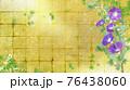 紫色の朝顔が咲く金屏風の背景の夏のイメージ 76438060