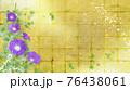 紫色の朝顔が咲く金屏風の背景の夏のイメージ 76438061