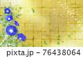 藍色の朝顔が咲く金屏風の背景の夏のイメージ 76438064