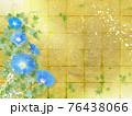 青い朝顔が咲く金屏風の背景の夏のイメージ 76438066