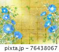 青い朝顔が咲く金屏風の背景の夏のイメージ 76438067