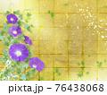 紫色の朝顔が咲く金屏風の背景の夏のイメージ 76438068