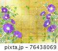紫色の朝顔が咲く金屏風の背景の夏のイメージ 76438069