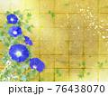 藍色の朝顔が咲く金屏風の背景の夏のイメージ 76438070