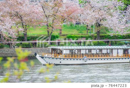 天満橋の桜と船 76447223