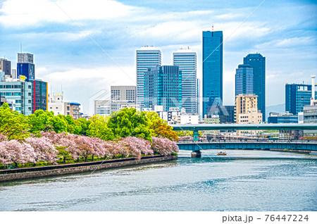 中之島の桜 76447224