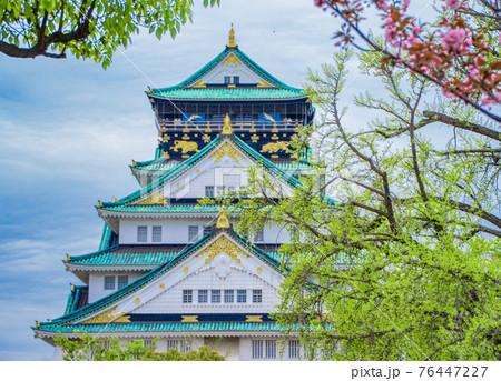 大阪城の春 76447227