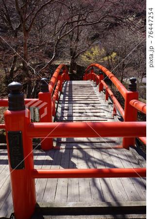 群馬県の伊香保温泉の河鹿橋 76447254