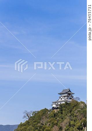 【愛知県】犬山城と青空 76455731