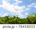爽やかな青空と新緑 76458033