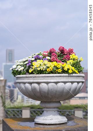ランドマークタワーをバックにした植木鉢の花 76458345