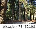 群馬県、吾妻神社の風景 春 76462108