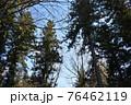 群馬県、吾妻神社の風景 春 76462119