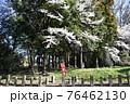 群馬県、吾妻神社の風景 春 76462130