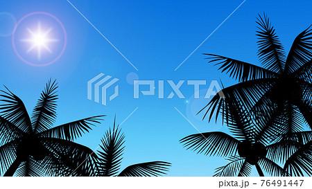 青空とヤシの木 76491447