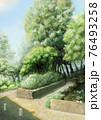 緑の樹木のある爽やかな公園背景素材_シンプル 76493258