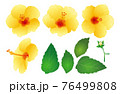 ハイビスカス_パーツ(黄) 76499808