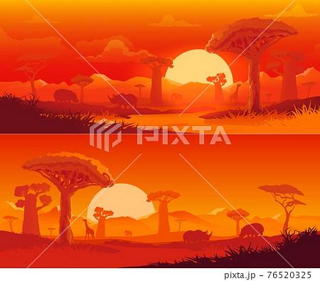 African savanna nature landscape at sunset 76520325
