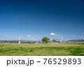春の淀川河川公園枚方地区 76529893