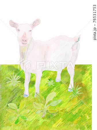 ヤギと草原の水彩イラスト 76531753