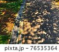 地面に映る葉っぱの影と用水路のある街の通りの風景 76535364