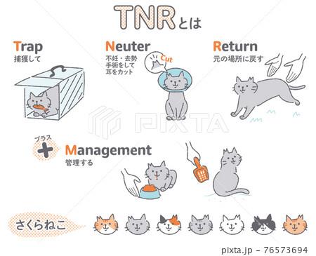 TNR活動 地域猫 イラストセット 76573694