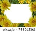 タンポポに、四角い白色コピースペース 76601598