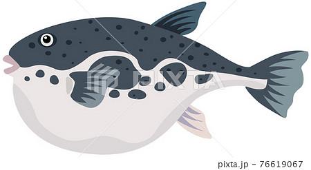 魚/フグ 76619067