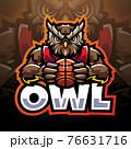 Owl sport esport mascot logo 76631716