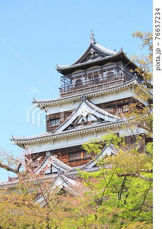 広島県の城、春の広島城 76657234