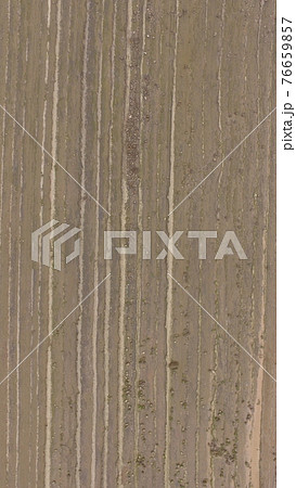 上空から俯瞰した「鬼の洗濯岩」〜ドローンで空撮(日南海岸/宮崎県宮崎市) 76659857