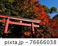 室生寺の風景 76666038