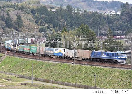 東海道本線 キクカナ大カーブを行く長大貨物列車 76669174