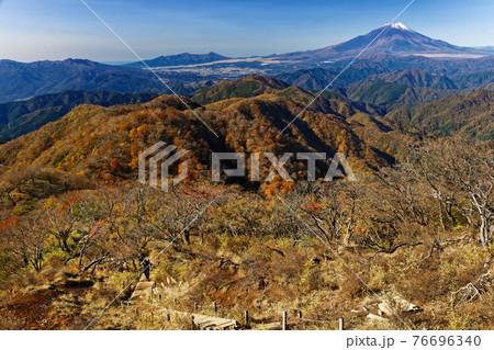 丹沢・塔ノ岳直下を行く登山者と紅葉の山並み・富士山 76696340