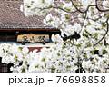 春の家山駅(大井川鉄道) 76698858