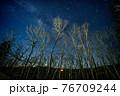 八ヶ岳高原の森の向こうに見える星空 76709244