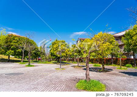 石畳の公園に隣接する新緑の住宅街 76709245