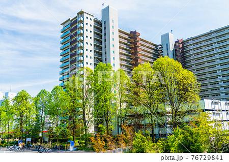 新緑とマンションを見る風景 76729841