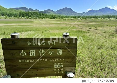 ズミの花咲く小田代ヶ原と奥日光の山々に標識 76740709