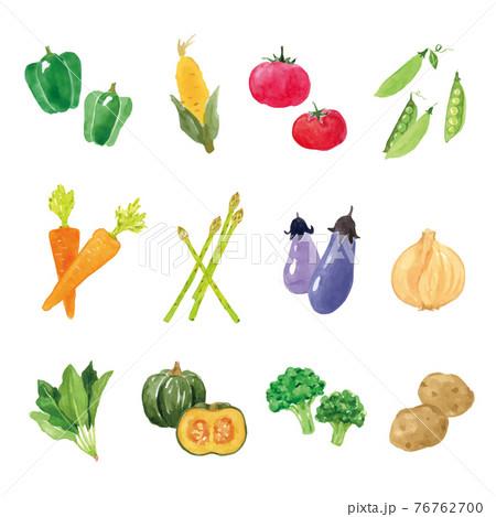 野菜の水彩イラストセット 76762700