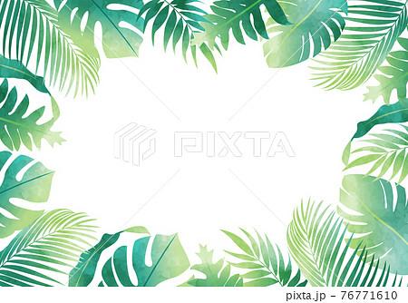 夏のモンステラやヤシの葉など数種類の植物のベクターイラストフレーム(コピースペース,水彩風) 76771610