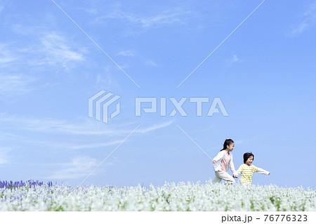 花畑を走る女の子と男の子 76776323