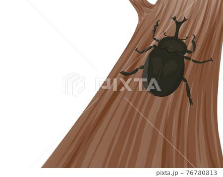 昆虫採集。 76780813
