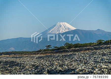 【富士山と沼津の千本松原】 76789390