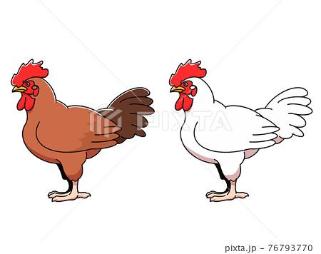 シンプルな鶏のイラスト 76793770