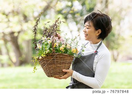 ガーデニング・寄せ植えをする日本人女性 76797848