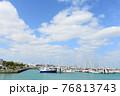 ヨットハーバーとさわやかな青空 76813743