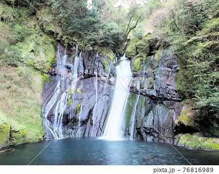滝水が幾筋もの白い糸のように流れ落ちる白水の滝 大分県竹田市荻町陽目 76816989