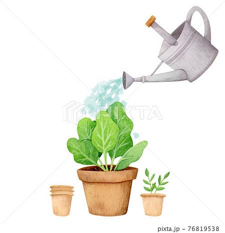 手描き水彩|ジョウロで水やり 家庭菜園 園芸 イラスト 76819538